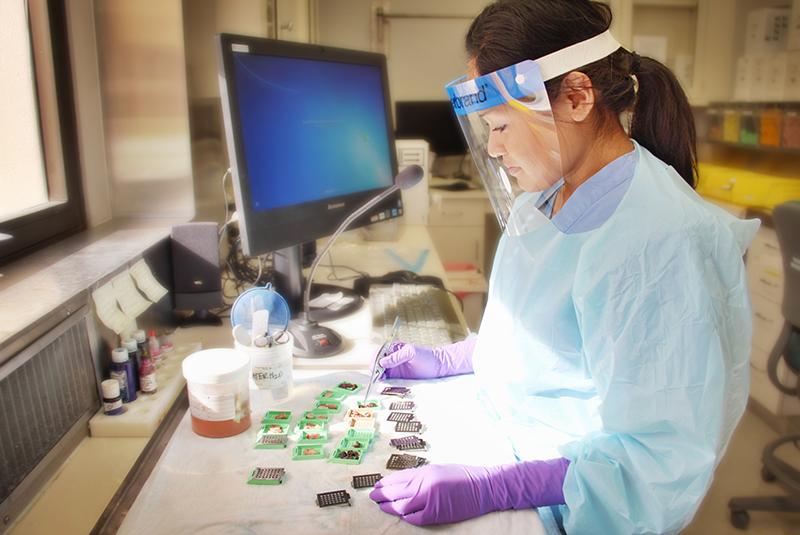 Pathologists' Assistant Program | Llu School Of Medicine